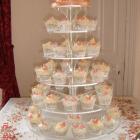 wedding cake 120910 (2)